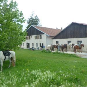 Hotel Pictures: Auberge Le Sillet, Longcochon