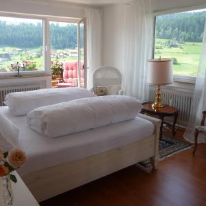 Hotel Pictures: Schwarzwald-Ferienwohnungen Begert, Baiersbronn