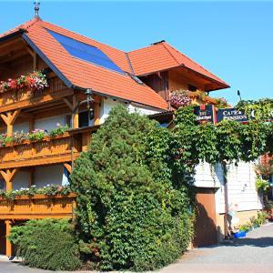Hotel Pictures: Cafe & Pension Carmen, Trusetal
