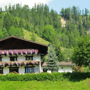 Hotellbilder: Höllerhof, Radstadt
