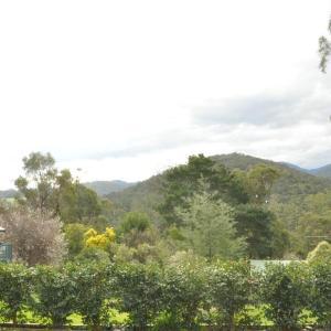 Hotel Pictures: Healesville Maroondah View Motel, Healesville