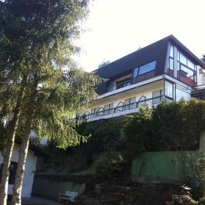 Hotel Pictures: Haus Carmenas, Rothenberg