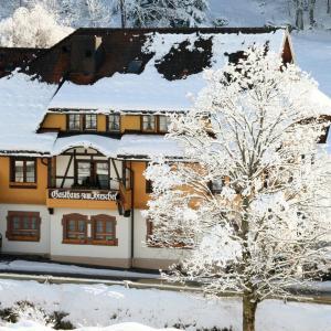 Hotelbilleder: Hotel Gasthaus Hirschen, Todtnau