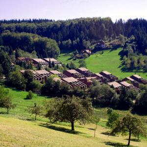 Hotelbilleder: Ferienwohnung im Terrassenpark, Sasbachwalden