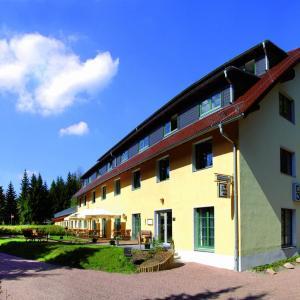 Hotelbilleder: Waldhotel am Aschergraben, Geising