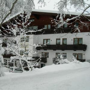 Fotos de l'hotel: Hotel Evianquelle, Bad Gastein