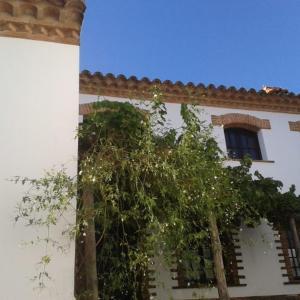 Hotel Pictures: Casa Pepa, Almonaster la Real