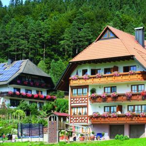 Hotelbilleder: Schlosshof - der Urlaubsbauernhof, Elzach