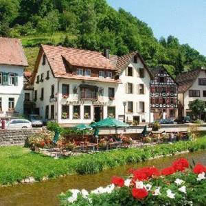 Hotel Pictures: Apartment Am Waldrand 1, Schiltach