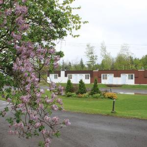 Hotel Pictures: Motel Boisé, Blainville