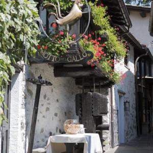 Hotel Pictures: Motto del Gallo, Taverne