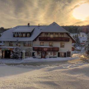Hotelbilleder: Landhotel Sonneck, Feldberg in Mecklenburg