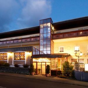 Hotelbilleder: Hotel Rückert, Nistertal