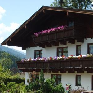 ホテル写真: Die Alpenrose, Niedernsill