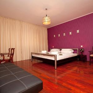 Zdjęcia hotelu: Pension Dinu Residence, Timişoara