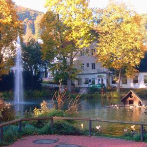 Hotelbilleder: Parkhotel Am Schwanenteich, Bad Sooden-Allendorf
