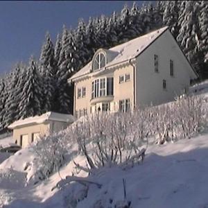 Hotelbilleder: Ferienwohnung Haus Waldesruh, Olsberg