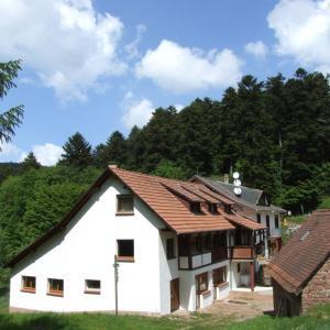 Hotel Pictures: Gîte des Deux Chateaux, Windstein