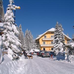 Zdjęcia hotelu: Ferienwohnungen Karl Aigner, Katschberghöhe