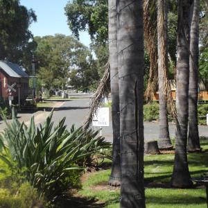 Photos de l'hôtel: West Wyalong Caravan Park, West Wyalong