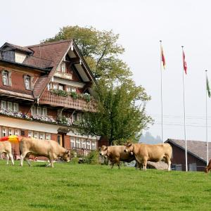 Hotel Pictures: Frohwies, Hemberg