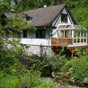 Hotel Pictures: Schätzlemühle, Schonach