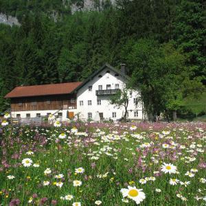 Hotellikuvia: Ferienwohnung Bluntaumühle, Golling an der Salzach