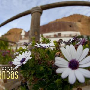 Hotel Pictures: Cuevas Blancas, Los Baños