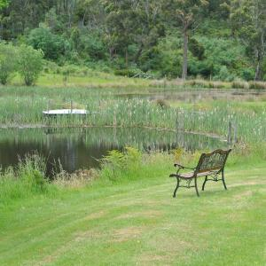 Fotografie hotelů: Hamlet Downs Country Accommodation, Fentonbury