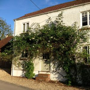 Hotel Pictures: Bramble Cottage B&B, Chute