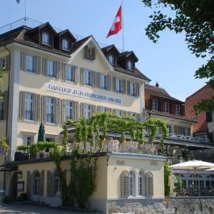 Hotel Pictures: Hotel Hirschen am See, Obermeilen