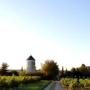 Hotel Pictures: Moulin Géant, Rochefort-sur-Loire