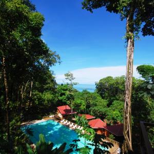 Hotel Pictures: Mar y Selva Ecolodge, Ballena