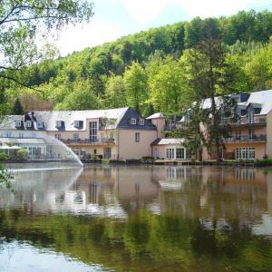 Hotel Pictures: Hotel Molitors Mühle, Eisenschmitt