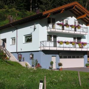 ホテル写真: Ferienwohnung Martin Mathies, Sankt Gallenkirch