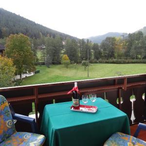Hotelbilleder: Schwarzwaldhaus am Kurpark, Enzklösterle