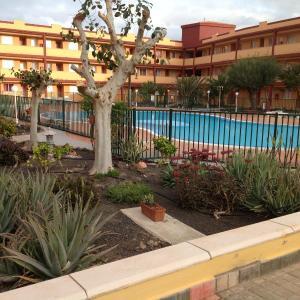 Hotel Pictures: Apartamentos Las Caletas Playa, Parque Holandes