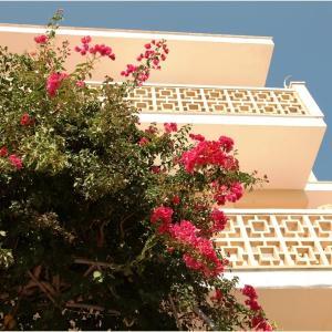 Hotel Pictures: Casa de la Vida, Santanyi