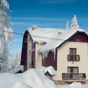 Φωτογραφίες: Apartments and Rooms Planinska Idila, Τζαχορίνα