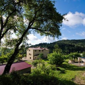 Hotel Pictures: Les Muntades, Jorba