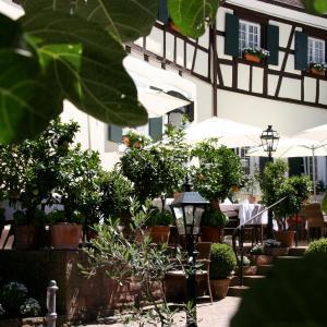Hotelbilleder: Romantik Hotel zur Sonne, Badenweiler