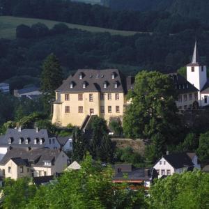 Hotel Pictures: Romantik Schloßhotel Kurfürstliches Amtshaus Dauner Burg, Daun