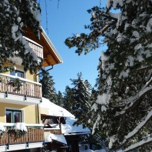 Foto Hotel: Almhaus Blümel, Turracher Hohe