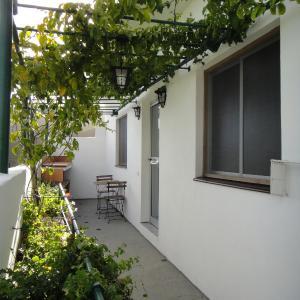 Hotel Pictures: La Mejorana, Candelaria