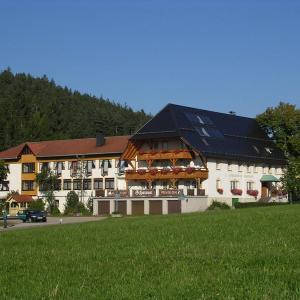 Hotel Pictures: Landgasthof Zum Schwanen, Hornberg
