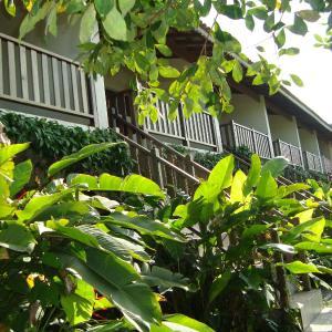 Hotel Pictures: Chalés Ancoradouro, Boracéia