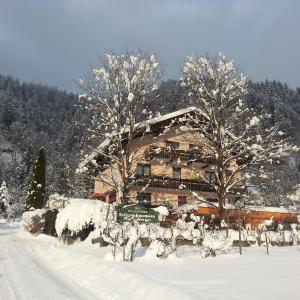 Hotel Pictures: Enzianbrenner, Jenig