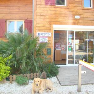 Hotel Pictures: Camping Cap Sud, Alénya