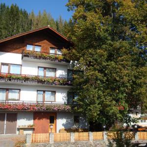 Foto Hotel: Gasthof Trattner Pension Waldhof, Sankt Peter am Kammersberg