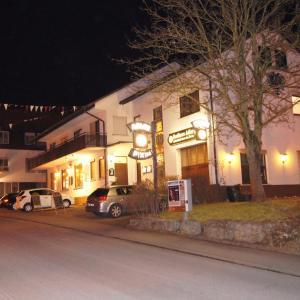 Hotelbilleder: Gasthaus Adler, Dietingen